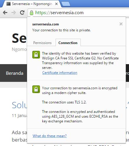 WoSign Free DV SSL aktif